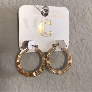 tiny hoop earrings